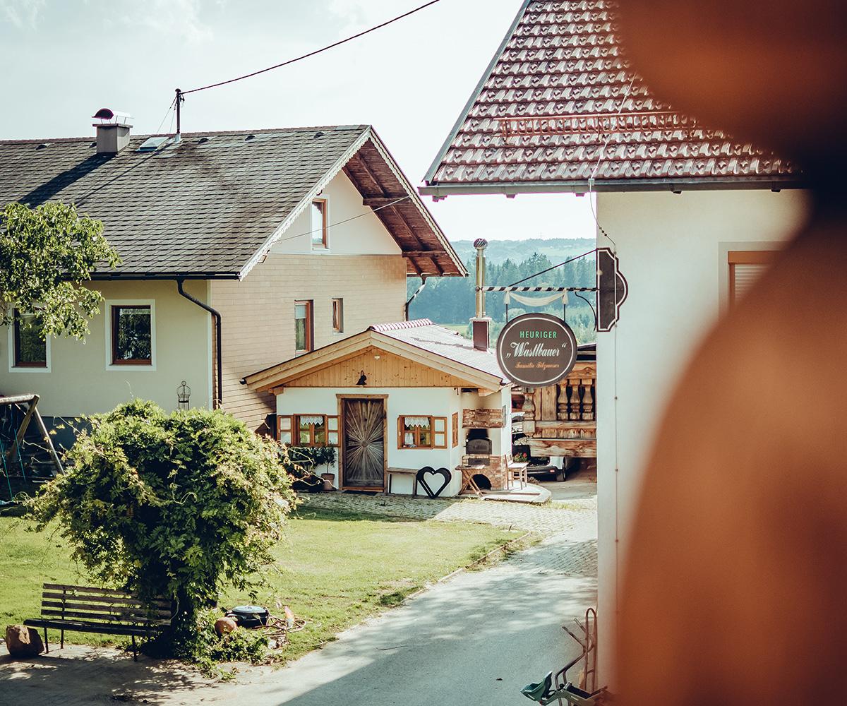 image-website-detail-holzwiese