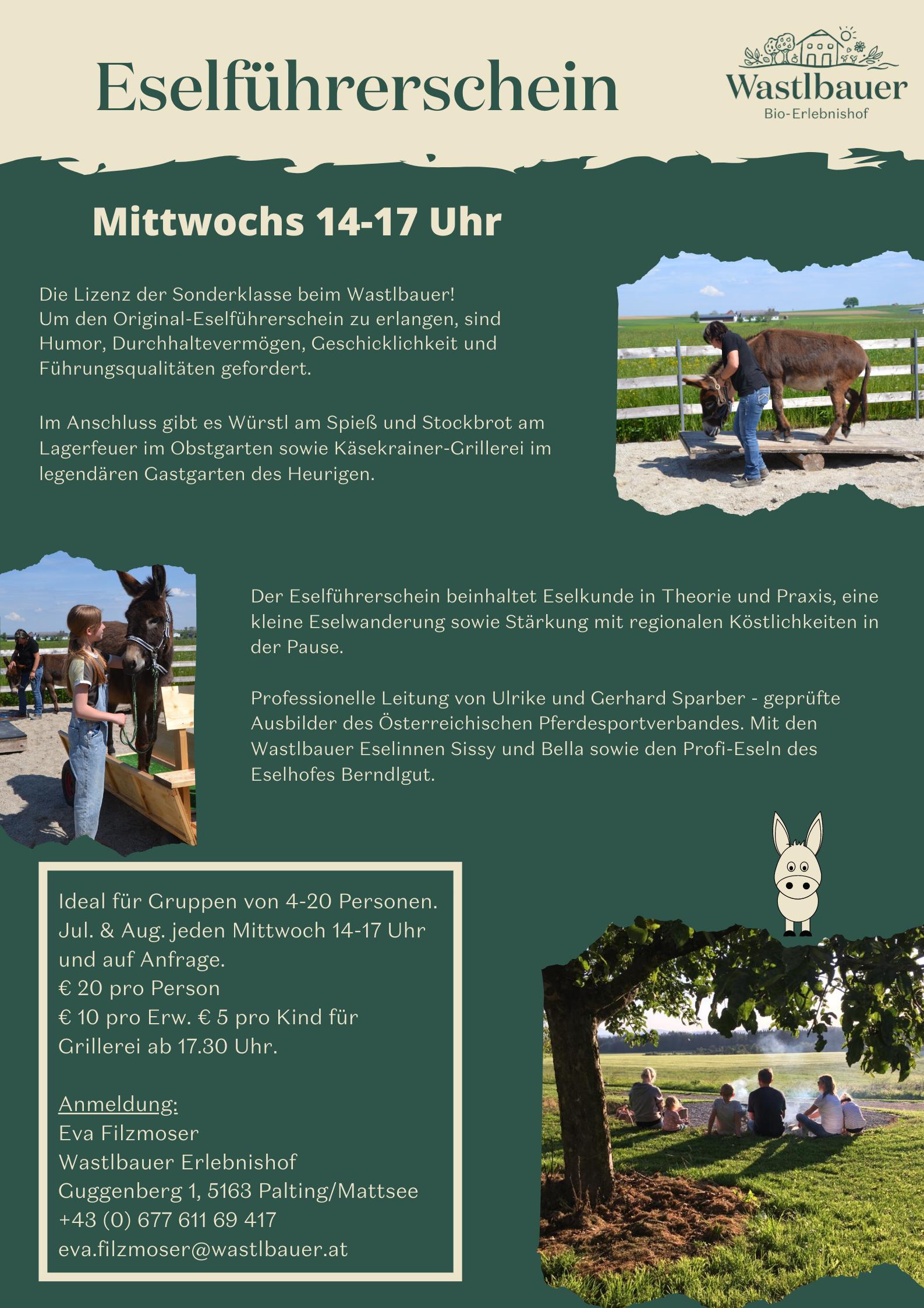 Eselführerschein poster_pic